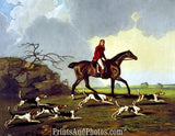 Captain Ricketts Beagles Hunting  4561