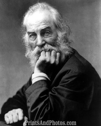 POET Walt Whitman Hand on Chin  4716