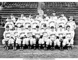 Boston Red Sox 1943 Team  4778