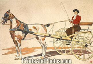 Kentucky Breaking Horse Cart Print 5944