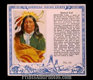 Indian Chief Spotted Tail Print 5955