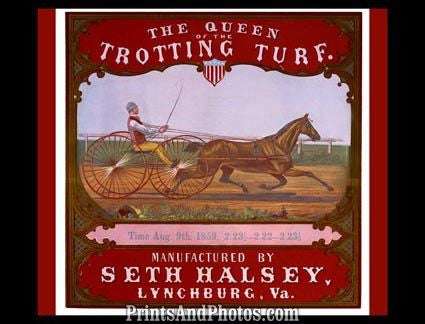 The Queen of Trotting Turf Print 6270