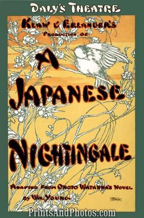Japanese Nightingale Stage  6867