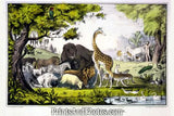 Adam Naming Creatures Art Litho  7178
