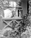 Mark Twain Sitting in Window  7227