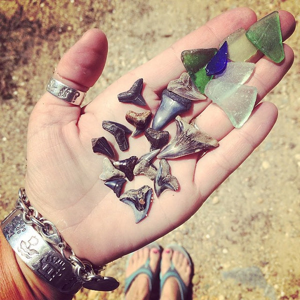 Traditions and Discoveries at the River House - sea glass and sharks teeth