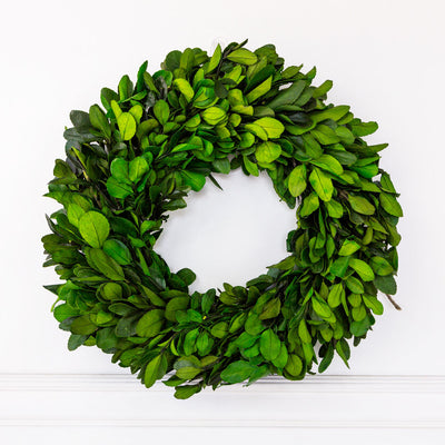 Pressed Boxwood Wreath
