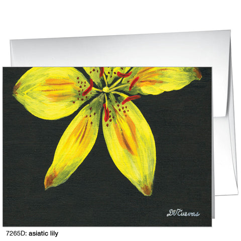 asiatic lily (#7265D)