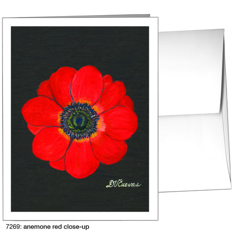 anemone red close-up (#7269)
