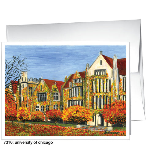 university of chicago (#7310)