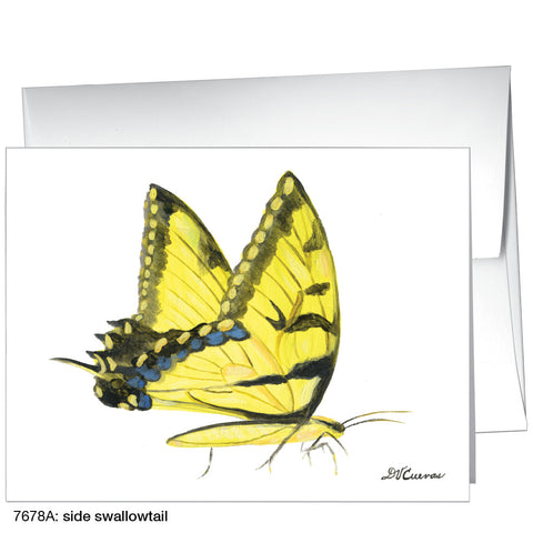 side swallowtail (#7678A)