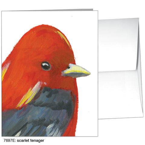 scarlet tenager (#7697E)