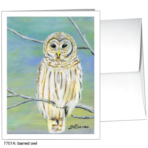 barred owl (#7701A)