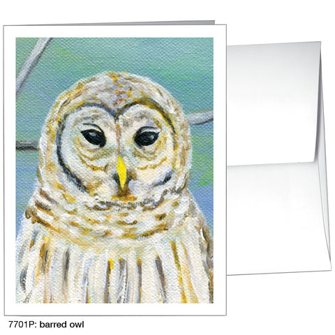 barred owl (#7701P)