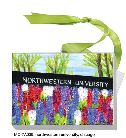 northwestern university, chicago (#MC-7A039)