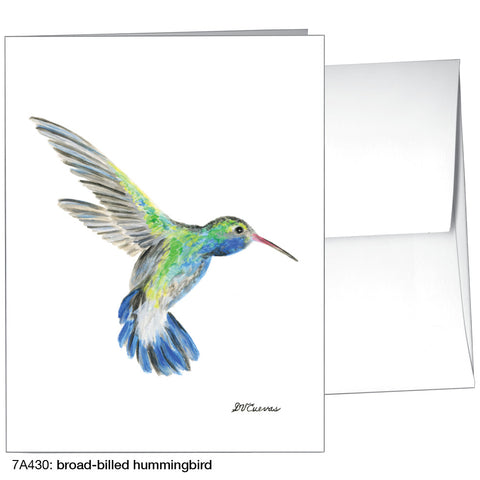 broad-billed hmmingbird (#7A430)