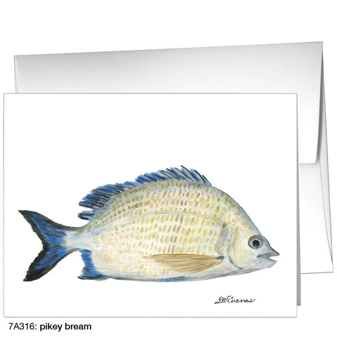 pikey bream (#7A316)
