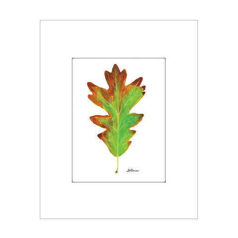 autumn white oak (#7627)