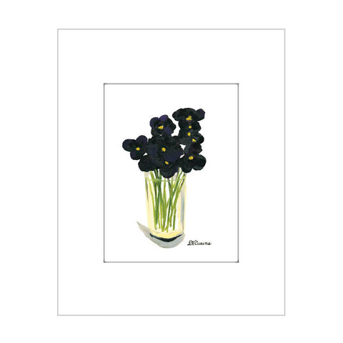 black pansies (#7108)
