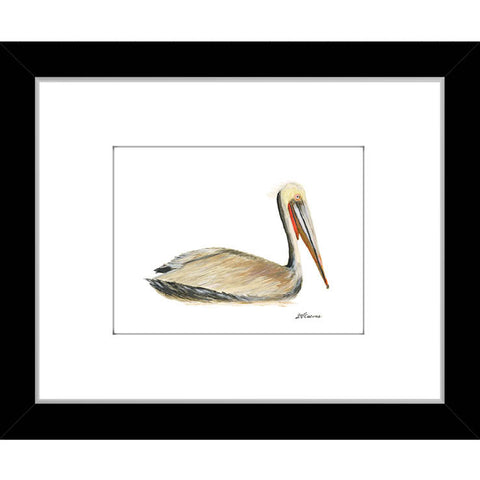 brown pelican (#7A053)
