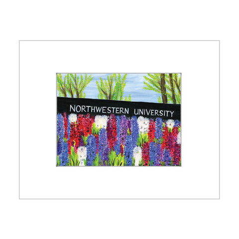 northwestern university, chicago (#7A039)