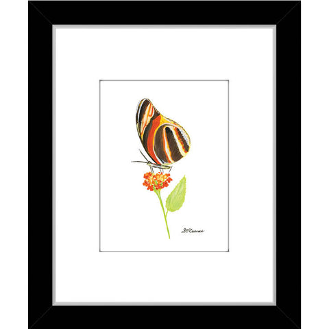 orange brown butterfly (#7676)