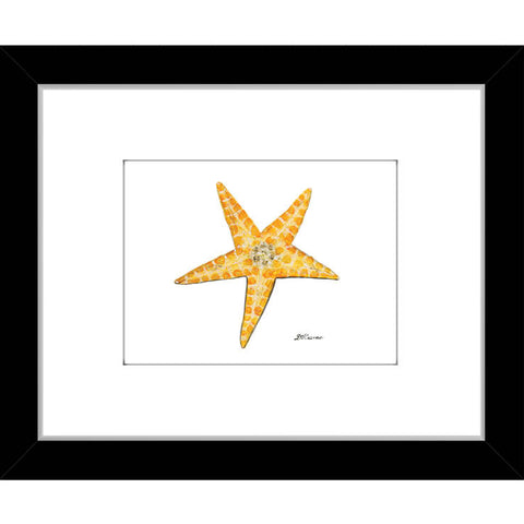 starfish shades of orange (#7A055)