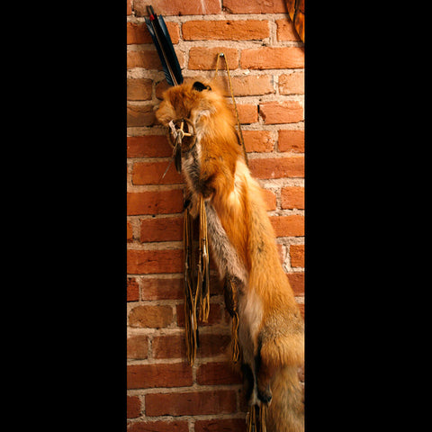 Navajo Full Fox Pelt Quiver with Arrows