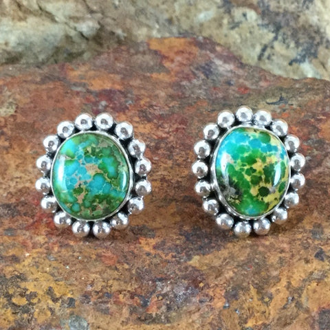 Sonoran Gold Turquoise Sterling Silver Earrings by Artie Yellowhorse