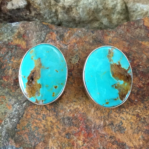 Royston Turquoise Sterling Silver Earrings -- Clip