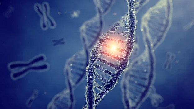 MTHFR Gene Mutation FAQs | What Is MTHFR? Gene Mutation Diagnosis, Symptoms, and Natural Remedies