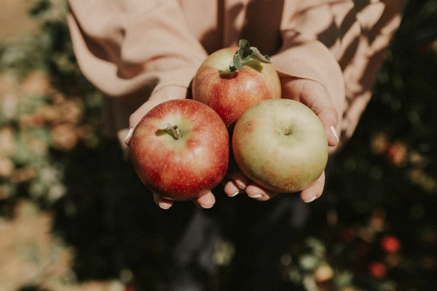 Apples | List of Foods to Buy Organic | The Organic Groceries You Actually Need | Organic Foods List
