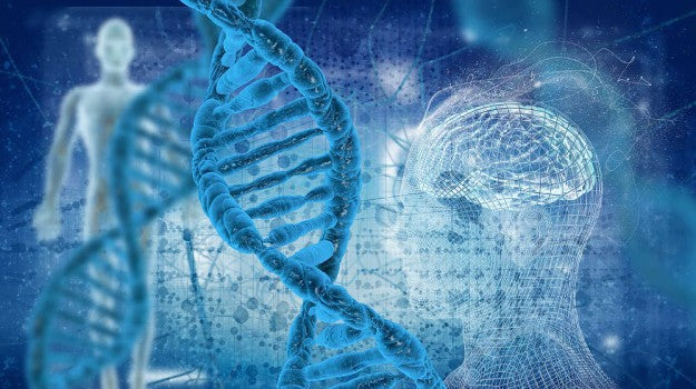 MTHFR Genetic Mutation [VIDEO] | What Is MTHFR? Gene Mutation Diagnosis, Symptoms, and Natural Remedies