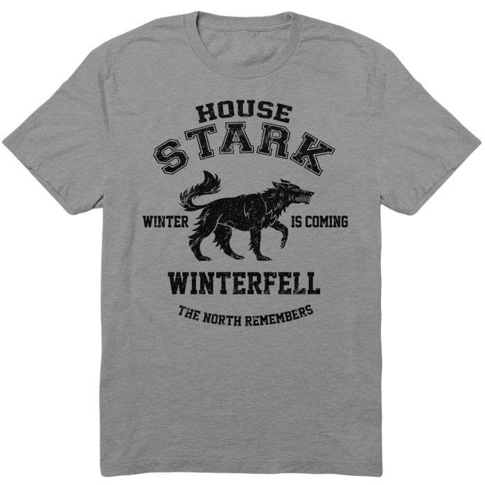 Winter is Coming (Black) - Youth T-Shirt