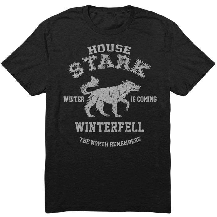 Winter is Coming - Men's T-Shirt