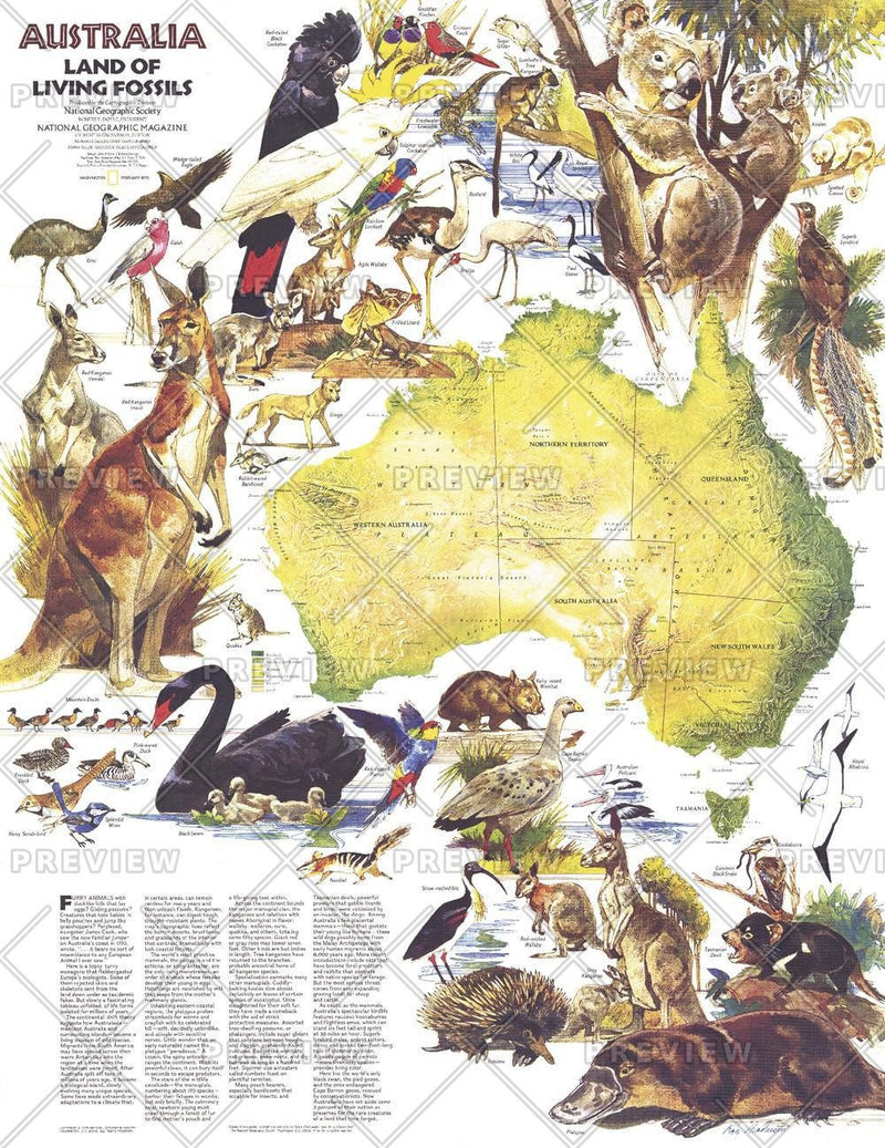 Australia, Land of Living Fossils  -  Published 1979