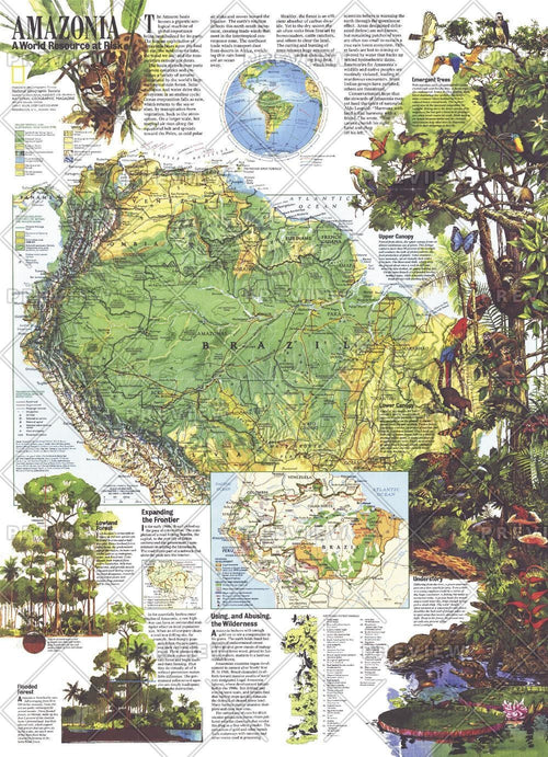 Amazonia, a World Resource At Risk  -  Published 1992