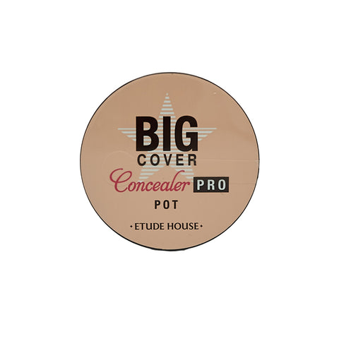 [Etude House] Big Cover Pot Concealer PRO 4g