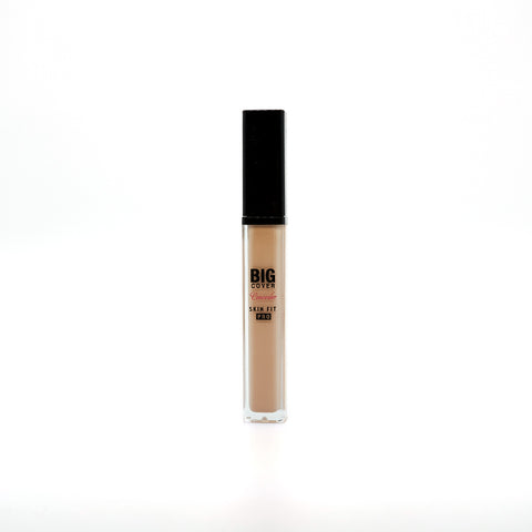 [Etude House] Big Cover Skin Fit Concealer PRO 7g