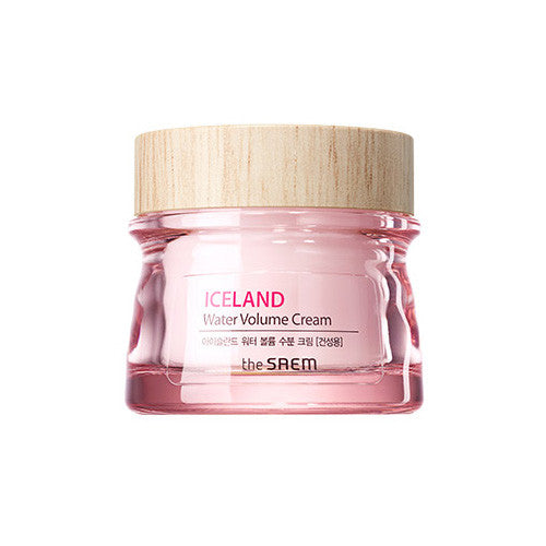 [The Saem] Iceland Water Volume Hydrating Cream(For Dry Skin) 80ml 2016 - Cosmetic Love