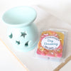 Day Dreaming Soy Wax Tarts - Set - New York's Bathhouse