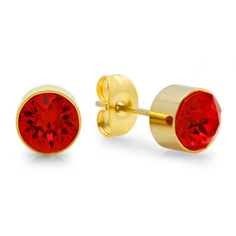 18k Gold Plated Stainless Steel Birthstone (January) Earring Studs