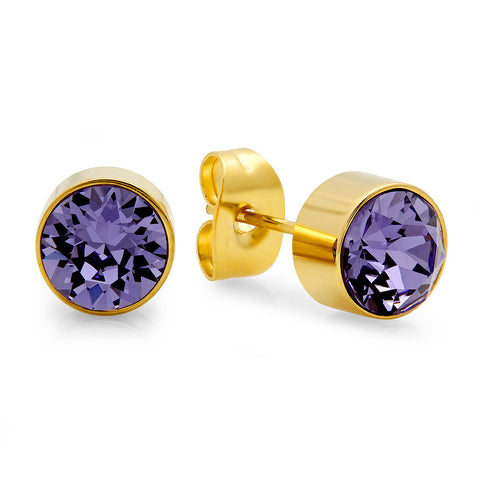 18k Gold Plated Stainless Steel Birthstone (February) Earring Studs