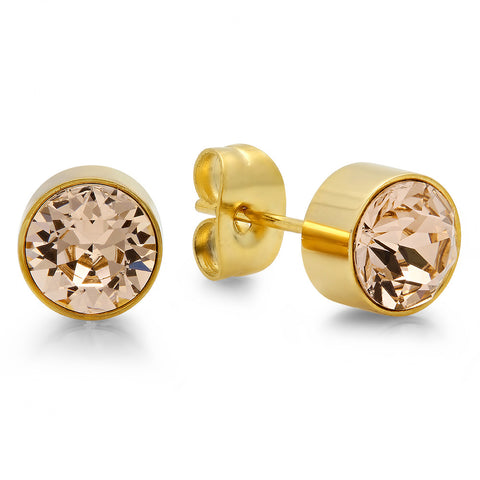 18k Gold Plated Stainless Steel Birthstone (November) Earring Studs