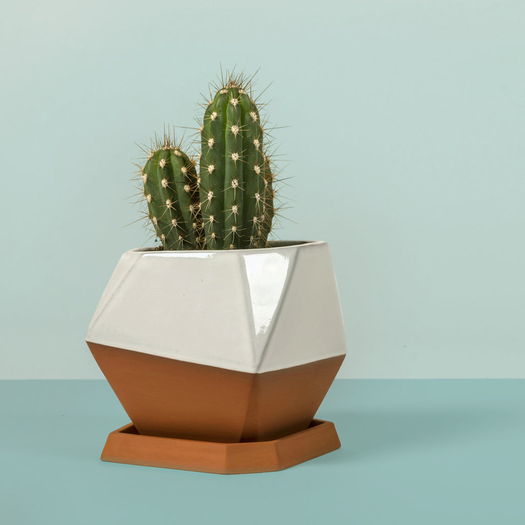 Geometric Pot (glazed)