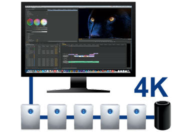 5big Thunderbolt™ 2, RAID dasy chain