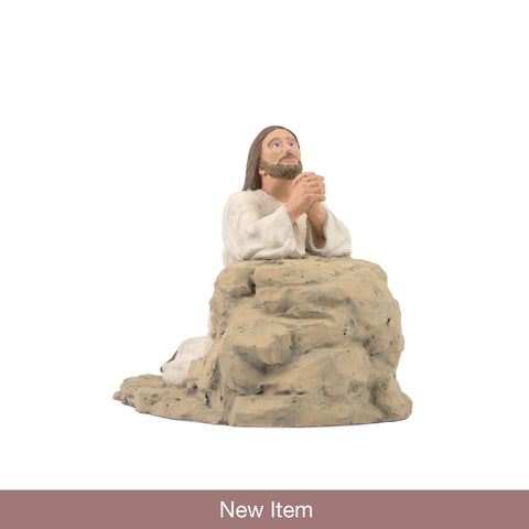 Christ praying