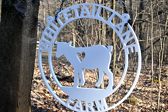 Whitetail Lane Farm Announces New Goat Milk Soap Varieties