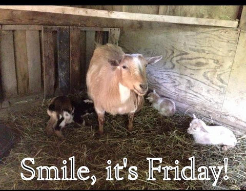 Smile, It's Friday