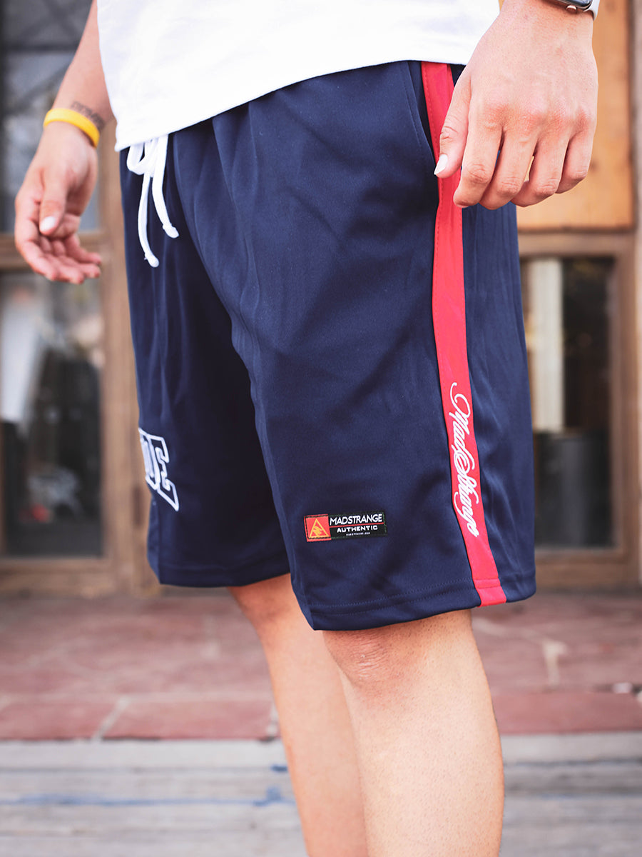 Oside Shorts (Navy)